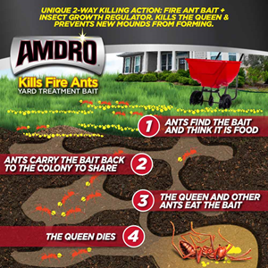 How AMDRO fire ant bait works