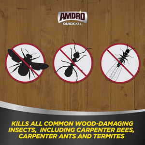 AMDRO quick kill carpenter bee, ant and termite killer