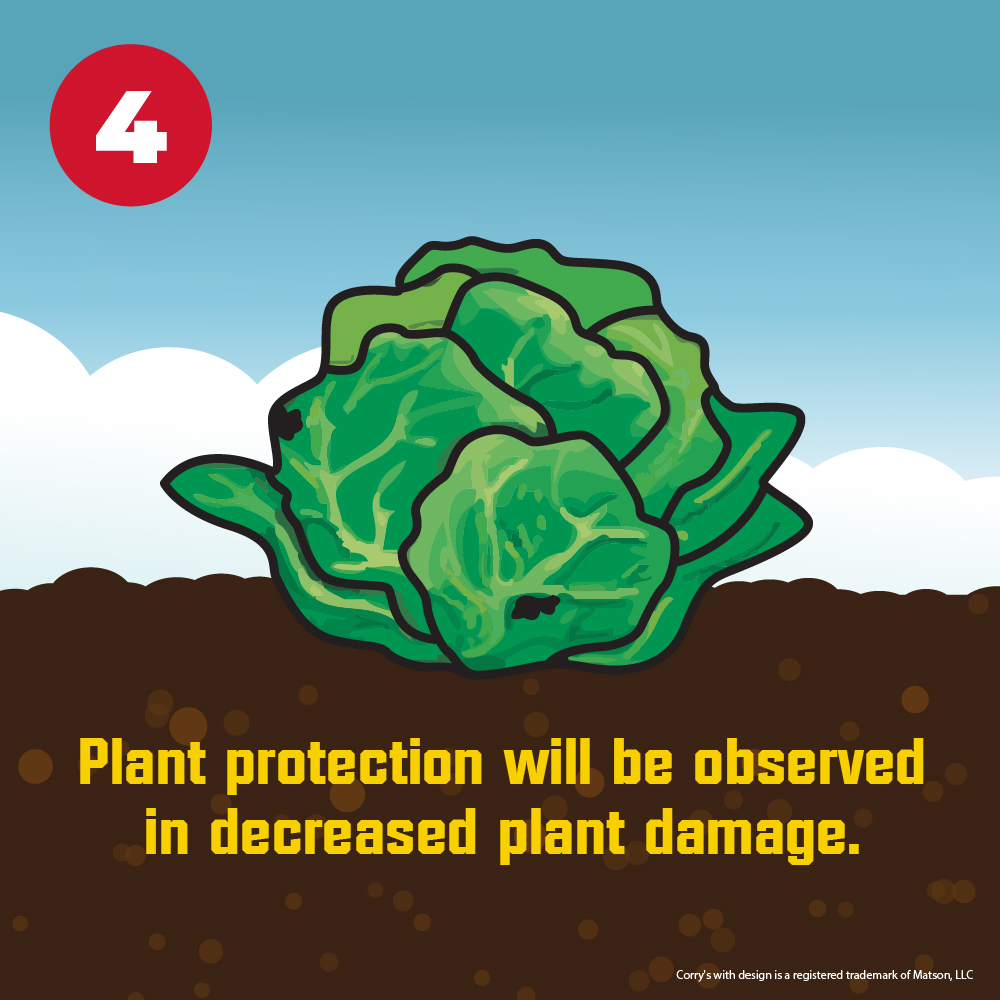 There will be a decrease in plant damage from slugs and snails